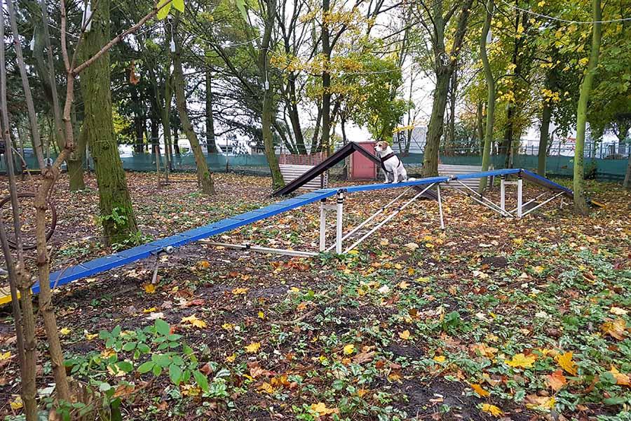 Grosser-Steg-Hundespielplatz-Koeln