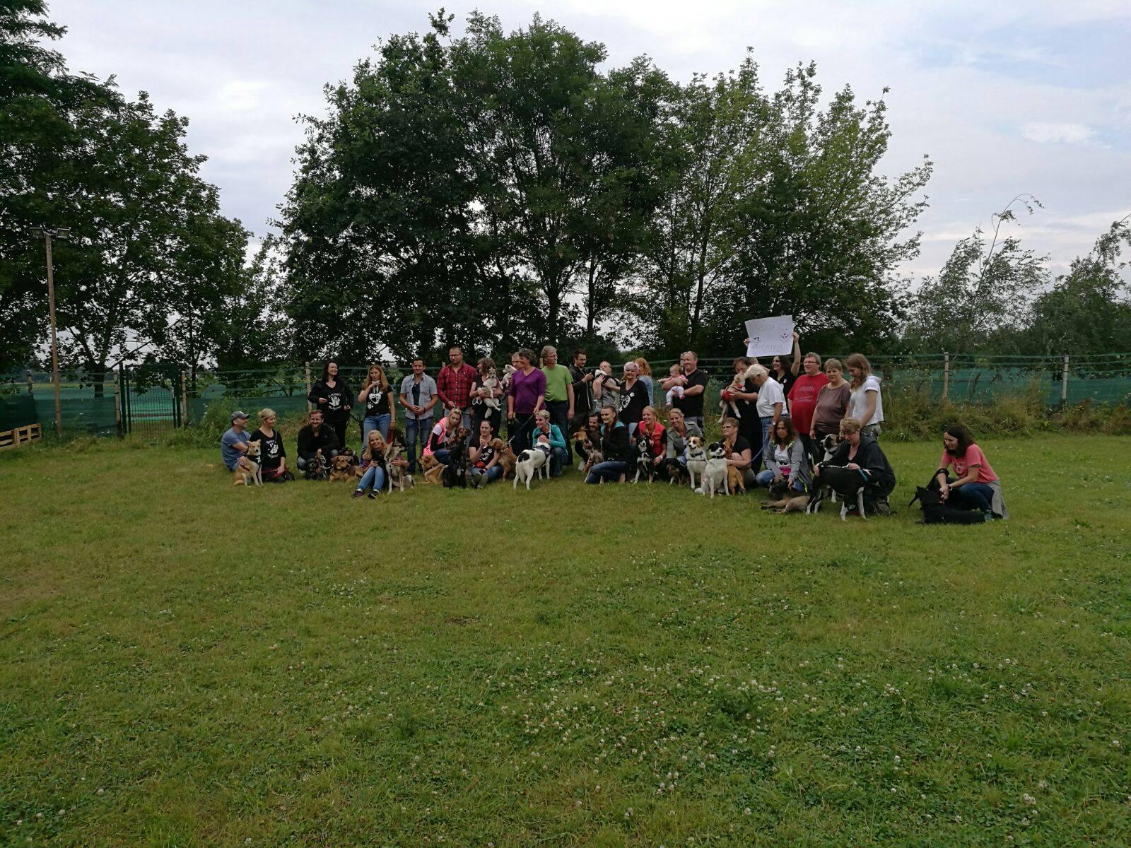 Hundespielplatz Treffen Tierengel Bulgarien 07-2016