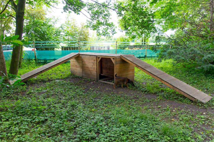 Hundespielplatz Köln Tunnel-Steg