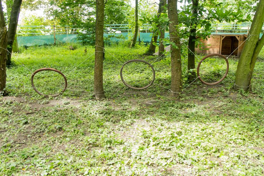 Hundespielplatz Köln Reifen
