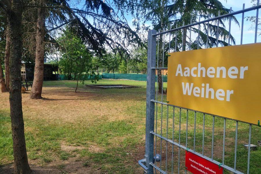 Hundespielplatz-Koeln-Aachener-Weiher-1