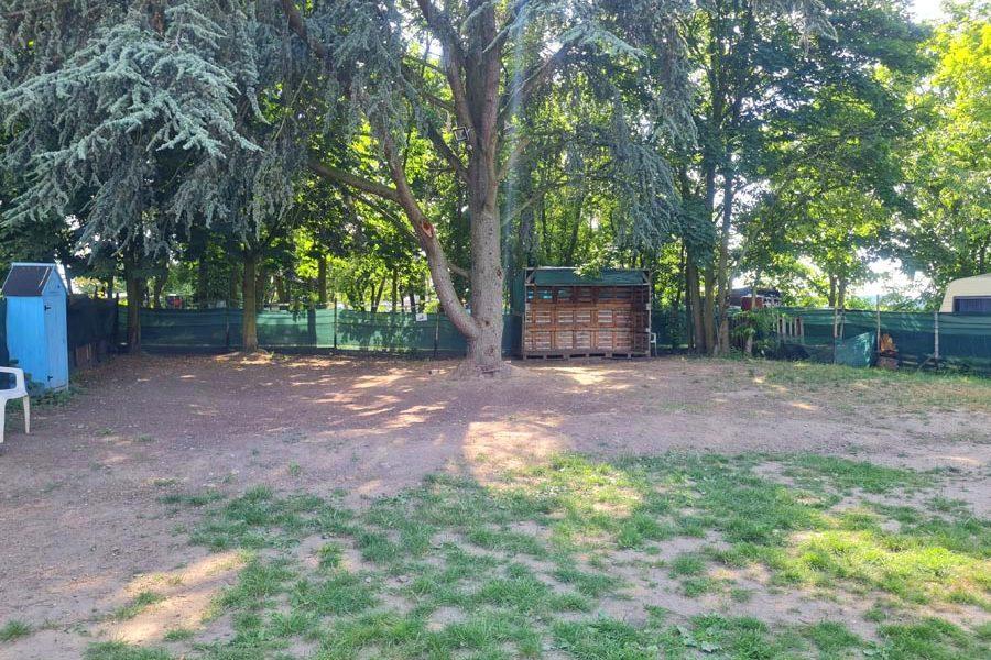 Hundespielplatz-Koeln-Gruenguertel-2