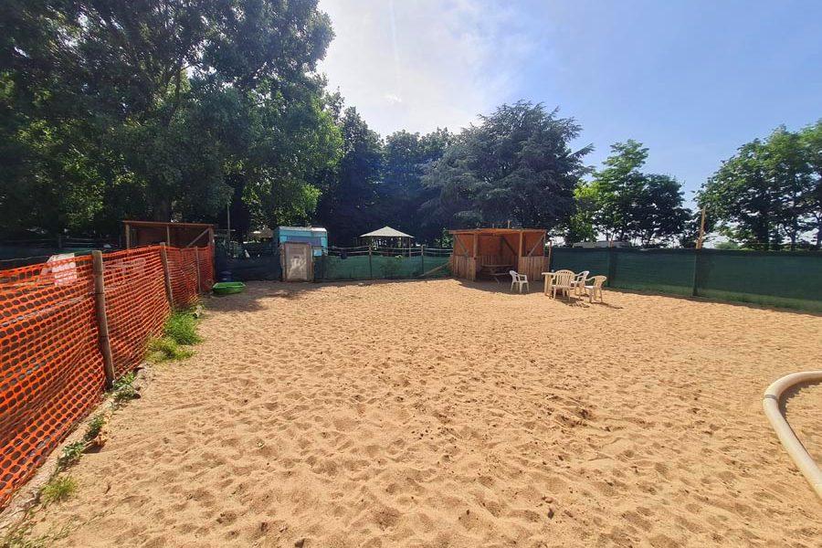 Hundespielplatz-Koeln-Niehler-Strand-2