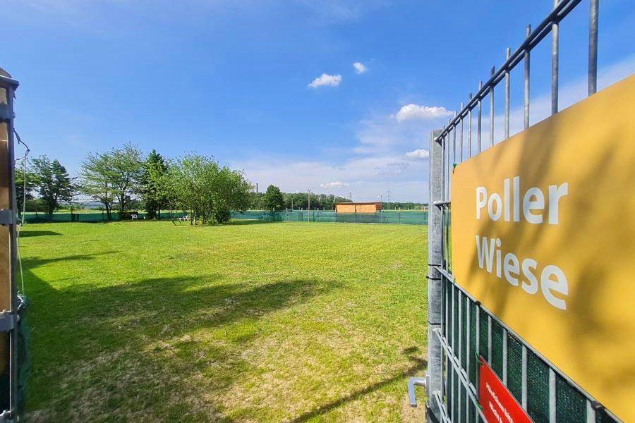 Hundespielplatz-Koeln-Poller-Wiese-1