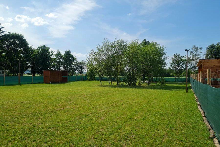 Hundespielplatz-Koeln-Poller-Wiese-4