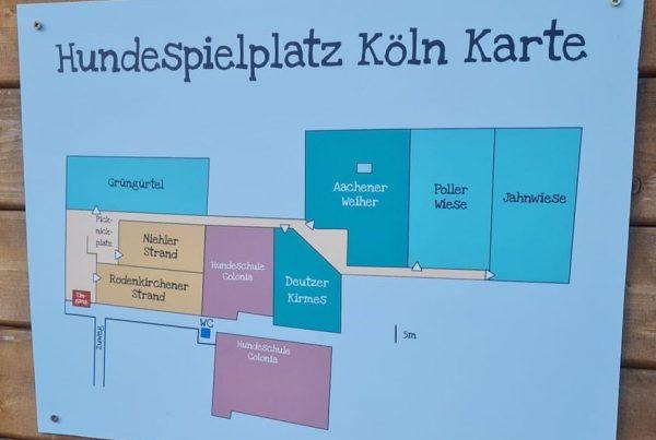neue Namen vom Hundespielplatz Köln